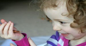 خطورة لدغ الحشرات و تأثيرها على الطفل